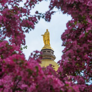 5.4.15 Mary Statue Spring Color.JPG